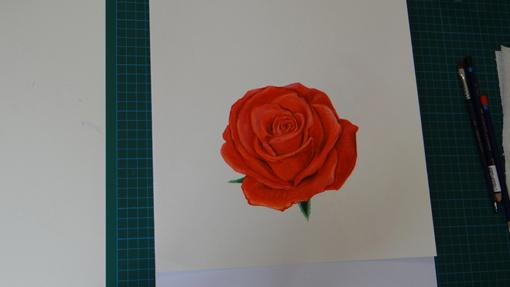 peindre une rose_artettuto