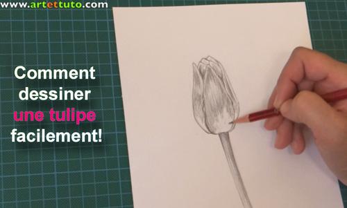 Comment dessiner une tulipe facilement