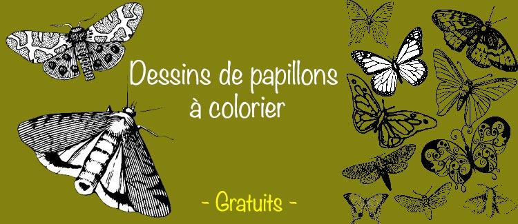 Images De Papillons à Imprimer Et à Colorier Apprendre A